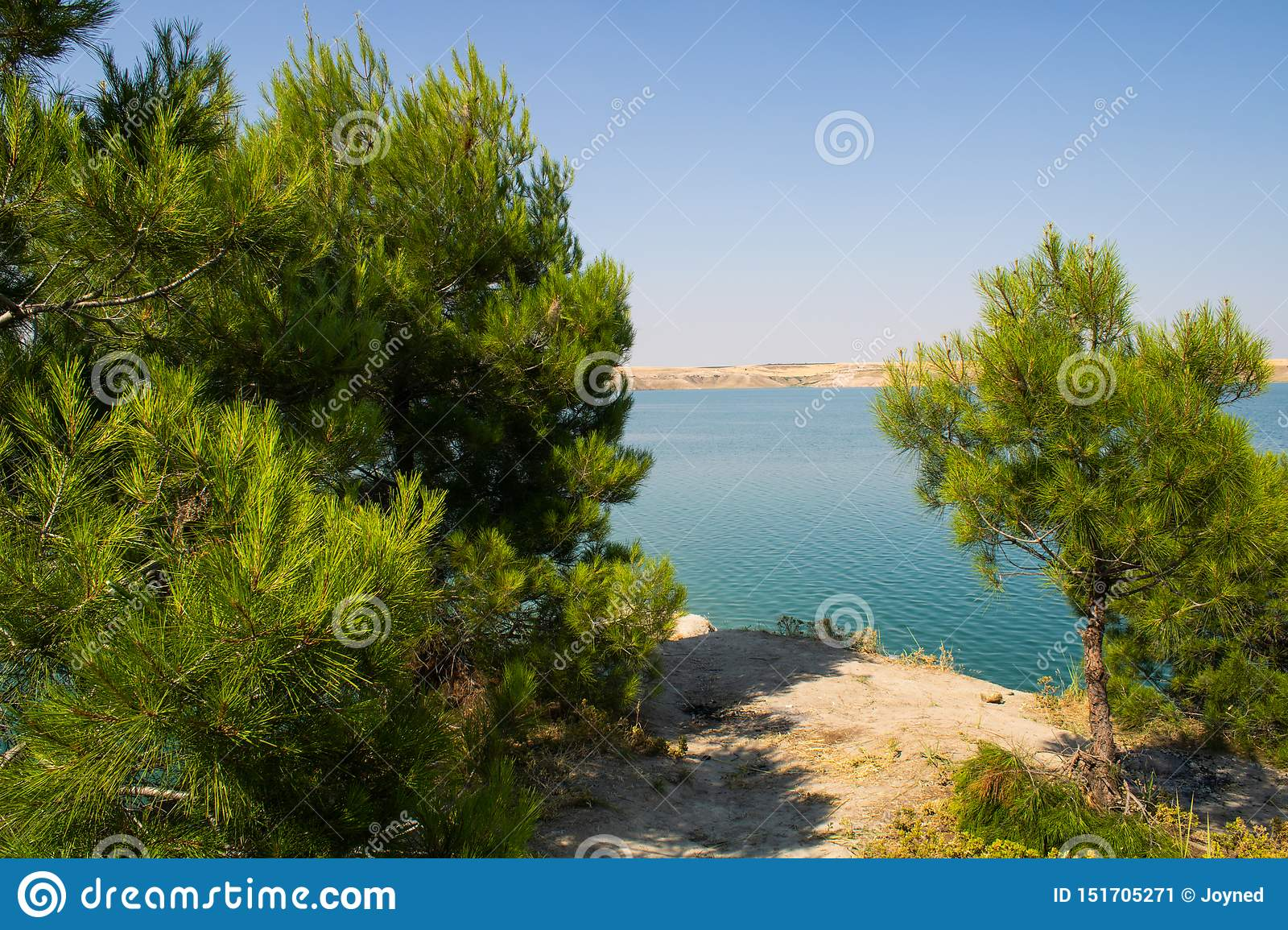 Turkish Adiyaman 26 June 2019 Gazihandede Picnic Area Stock Image Image Of Gaziantep Bloom 151705271
