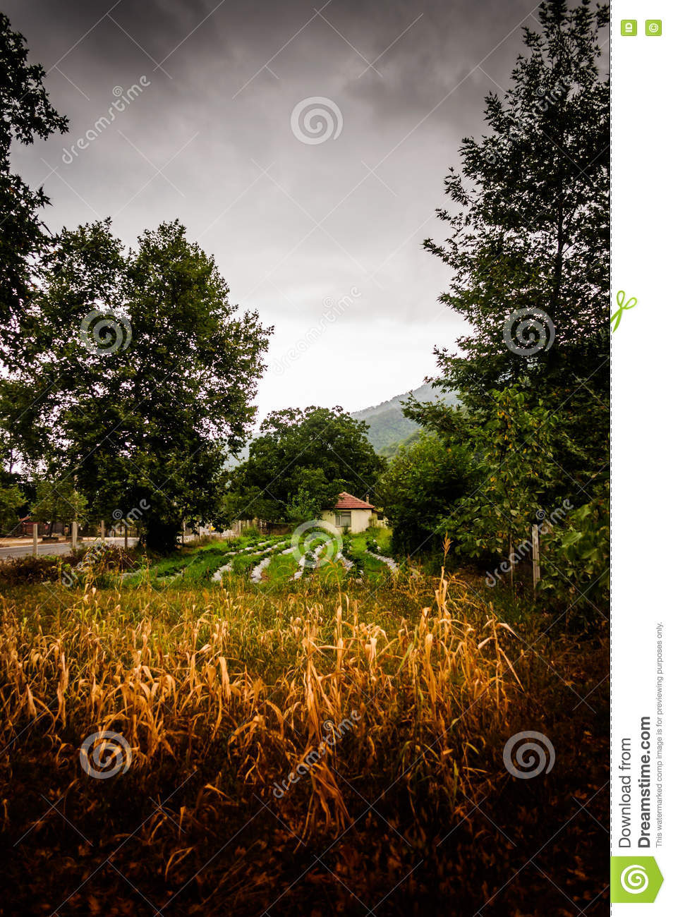 Turkish countryside village on stormy day stock photo image 75703858 - Countryside dream gardens ...