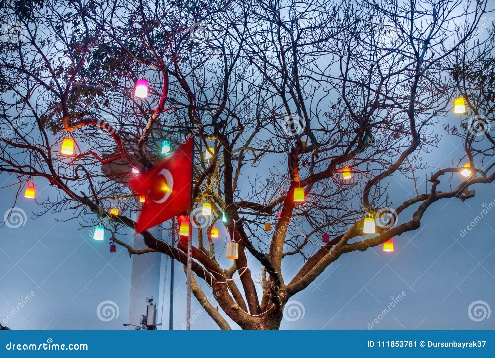 Turkish Flag & Tree Lights Uskudar Istanbul