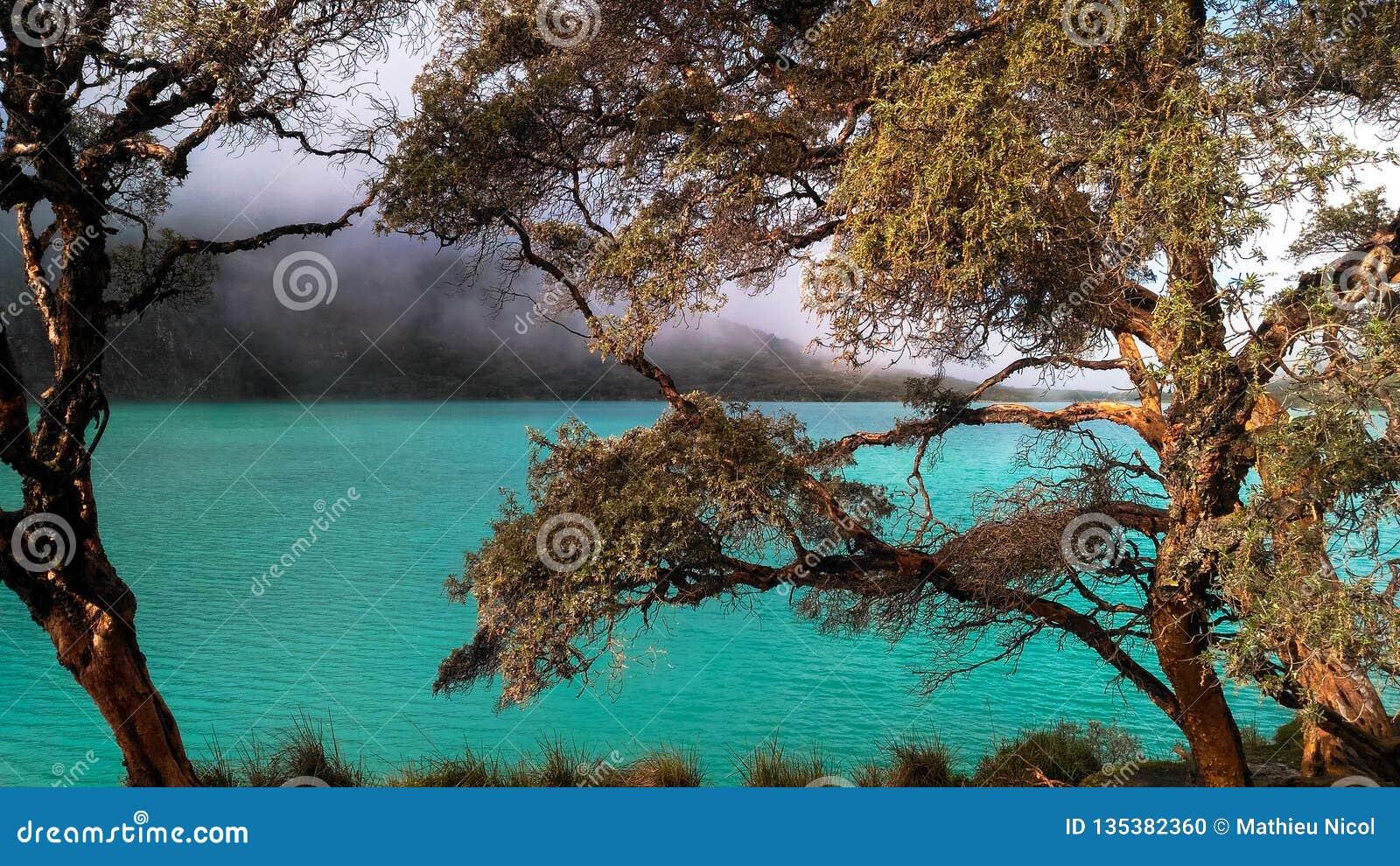 Turkusowy jeziorny Laguna 69 lokalizować w Białym Cordillera w Peru