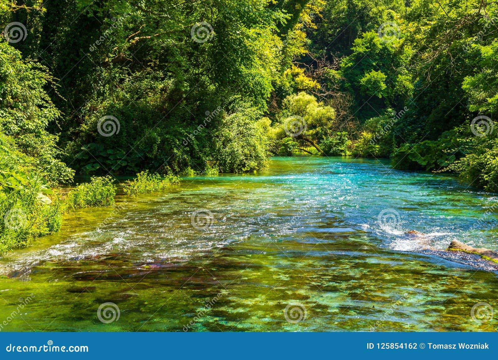 Turkusowy wiosny niebieskie oko - Syri ja Kalter, blisko miasteczka Muzine, Albania