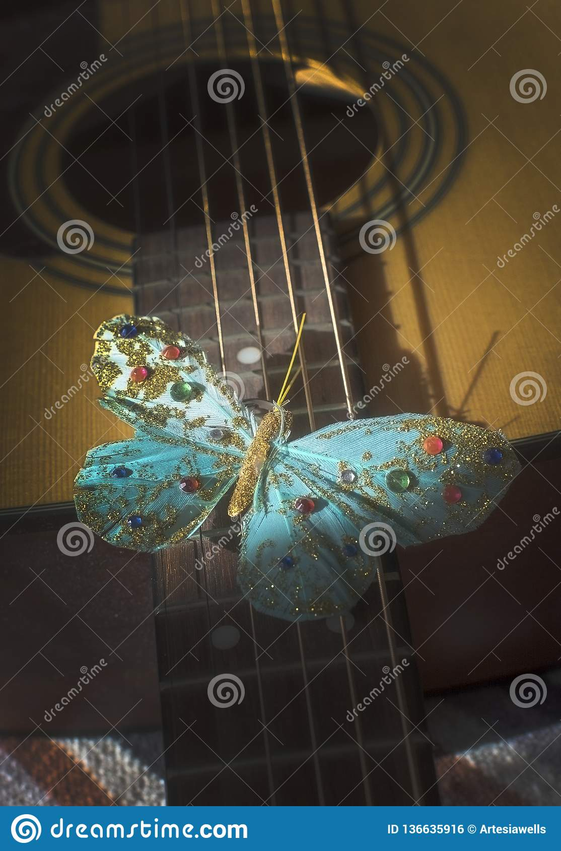 Turquoise butterfly on strings of acoustic guitar