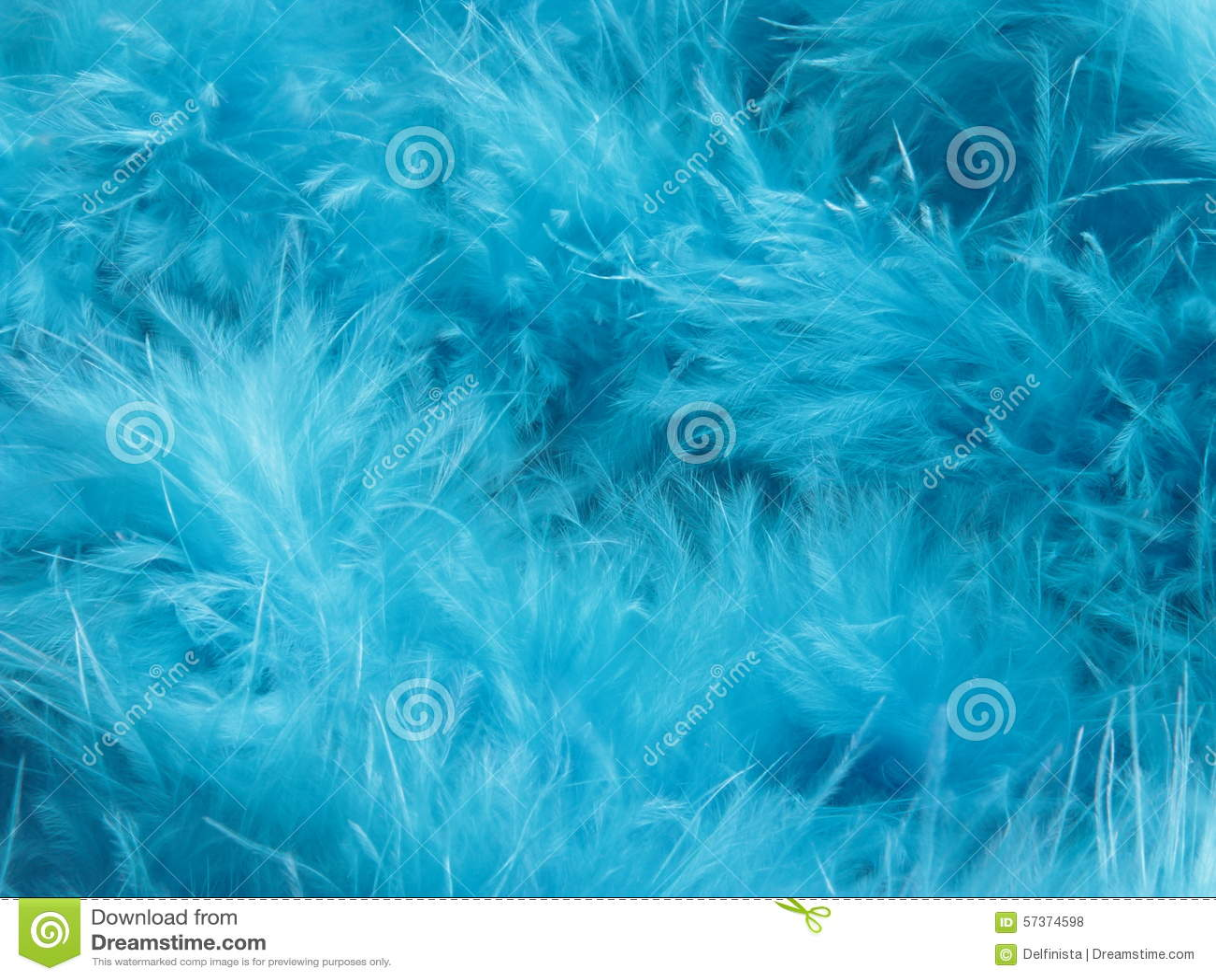 turquoise feathers background