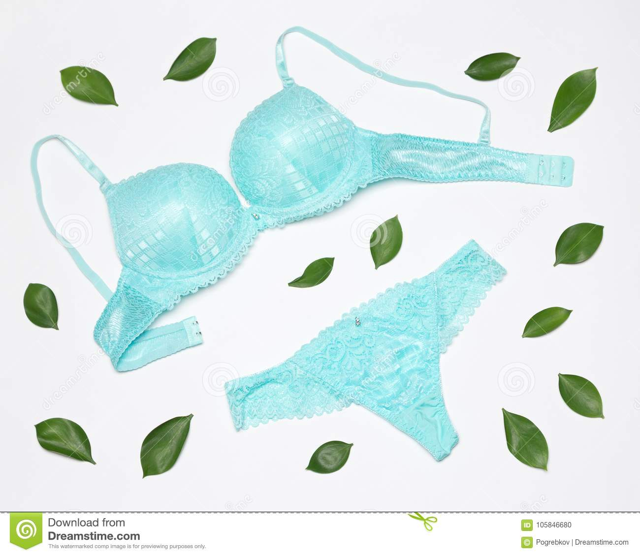 3f47baee51d2 Lingerie set of underwire bra and lace insert pantie surrounded by fresh  green leaves on white background