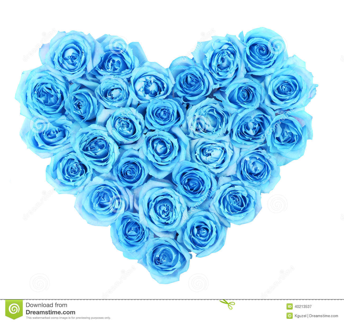 Turquoise roses in heart shape isolated stock photo - Chambre rose et turquoise ...