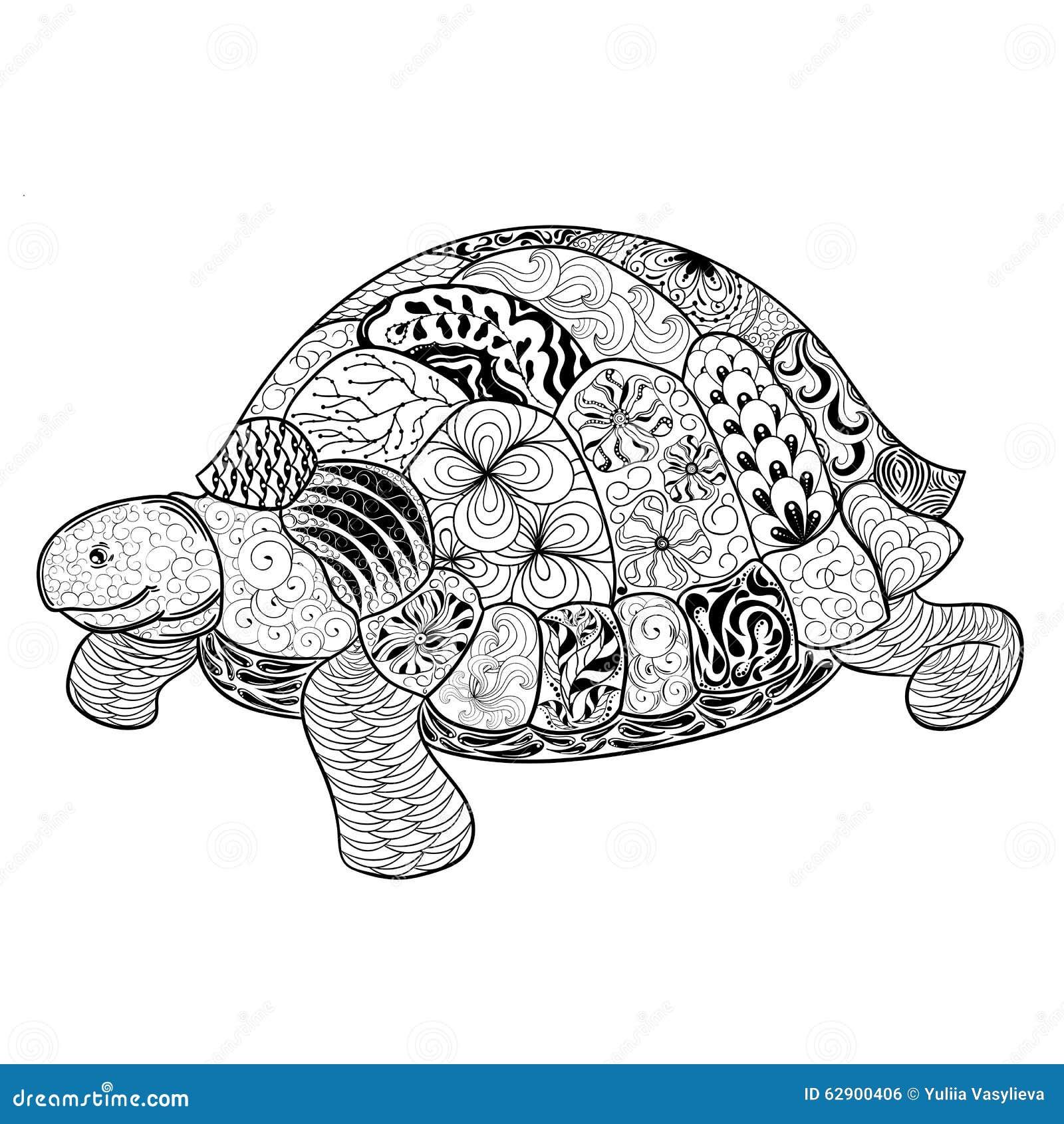 Turtle Doodle Illustration Stock Vector - Image: 62900406