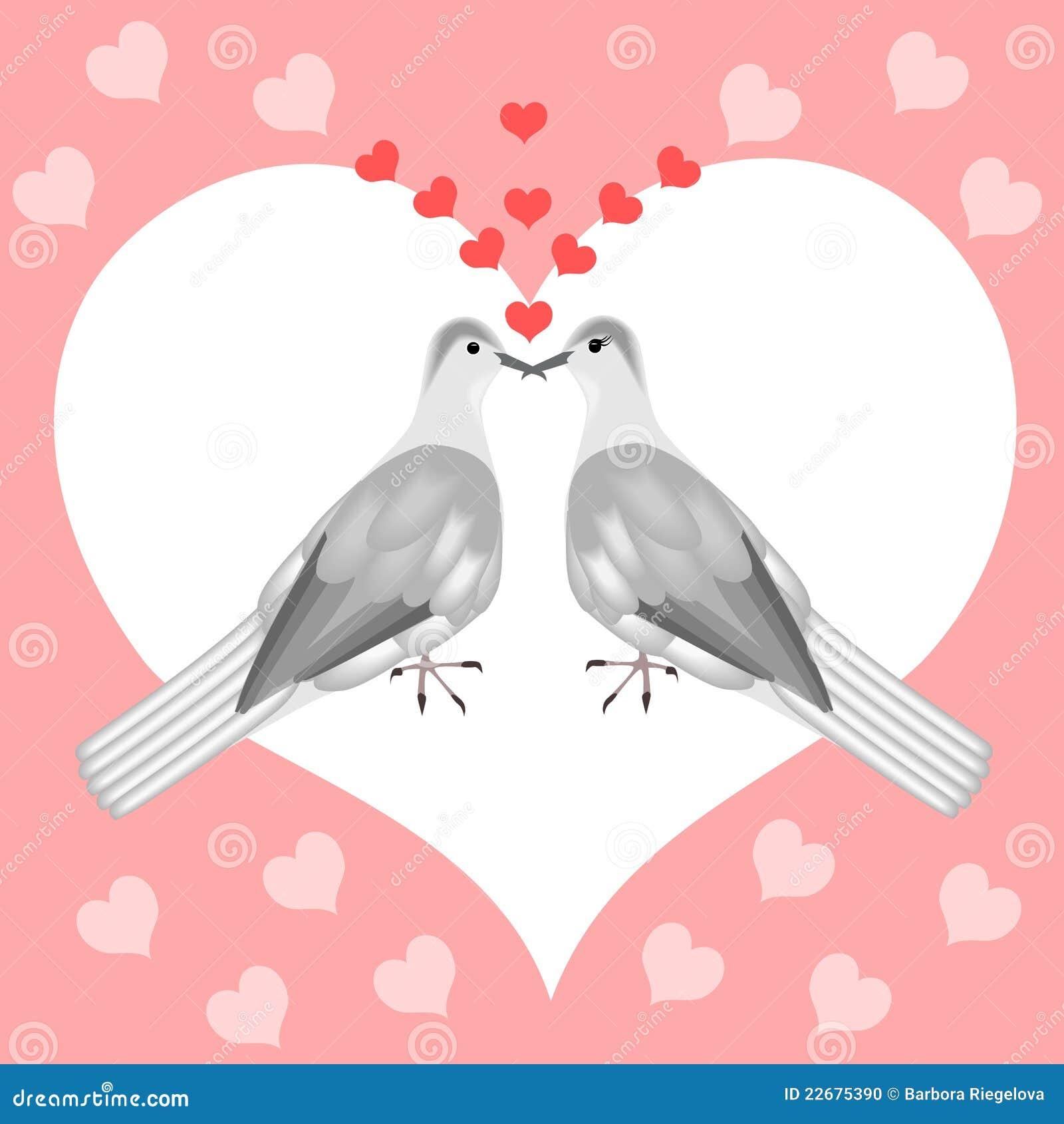Turtle Doves Stock Photo Image 22675390