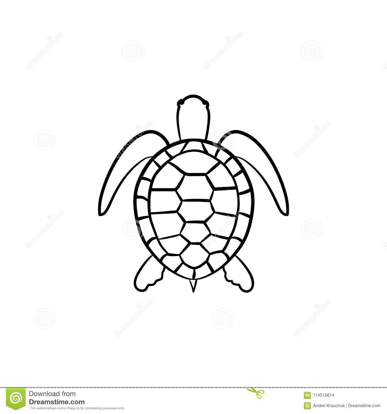 Turtle Hand Drawn Sketch Icon. Stock Vector - Illustration ...