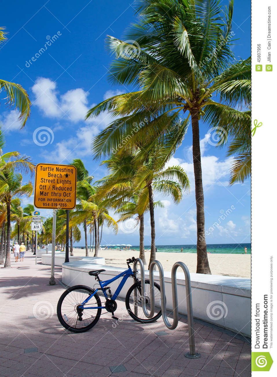 Turtle Nesting Beach, Fort Lauderdale, Florida USA Stock