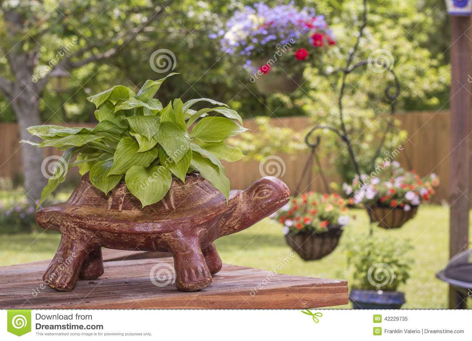 Turtle Planter Stock Image
