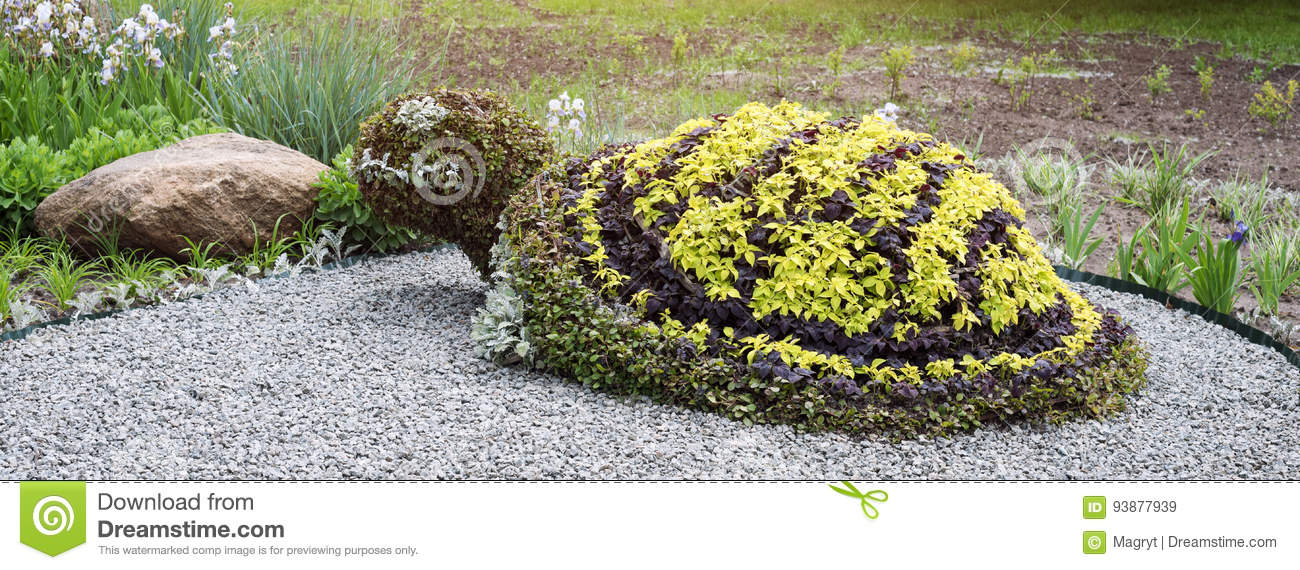 Turtle Shaped Bush In A Topiary Garden. Ornamental Park Garden Design.  Banner For Website