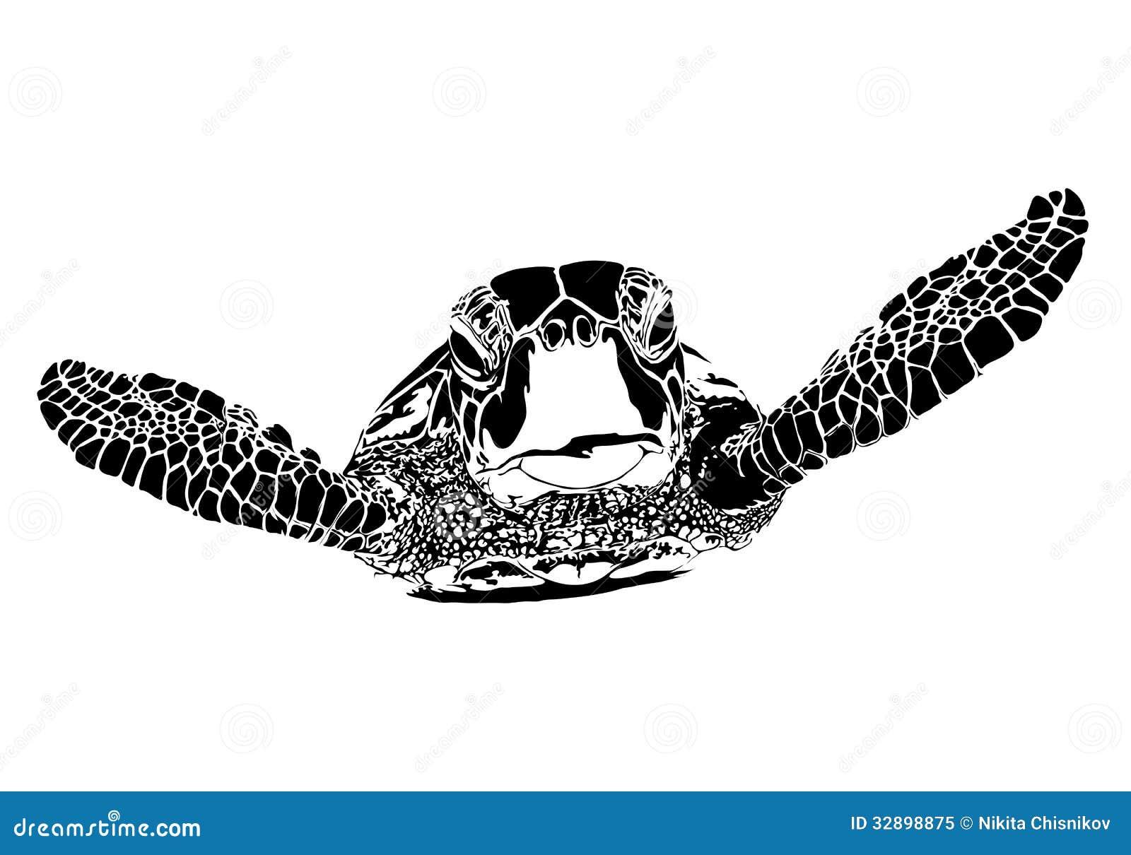 Sea Turtle Silhouette Clip Art Turtle silhouette on white