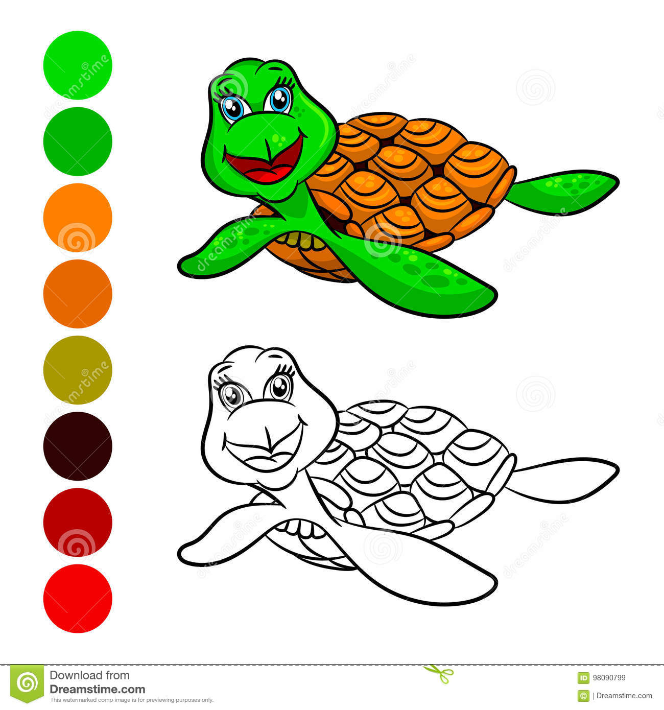 Turtles Coloring Book Stock Vector Illustration Of Color