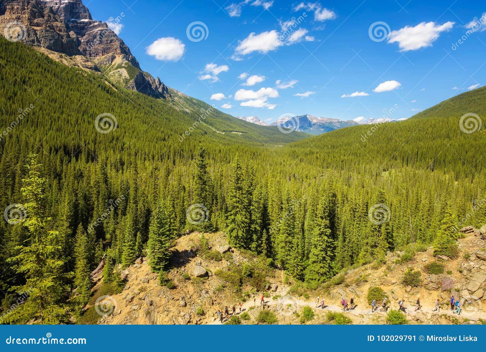Turyści chodzi w kierunku Morena jeziora w kanadyjskich Skalistych górach