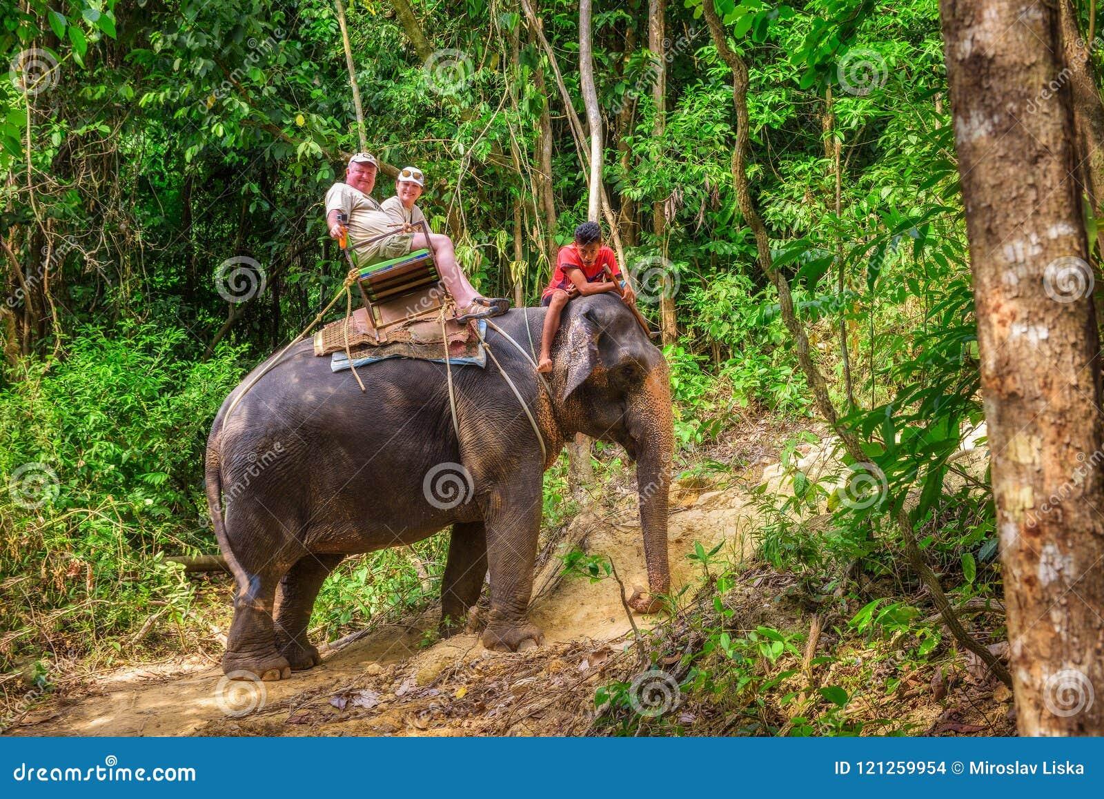Turyści jedzie słonia w Tajlandia