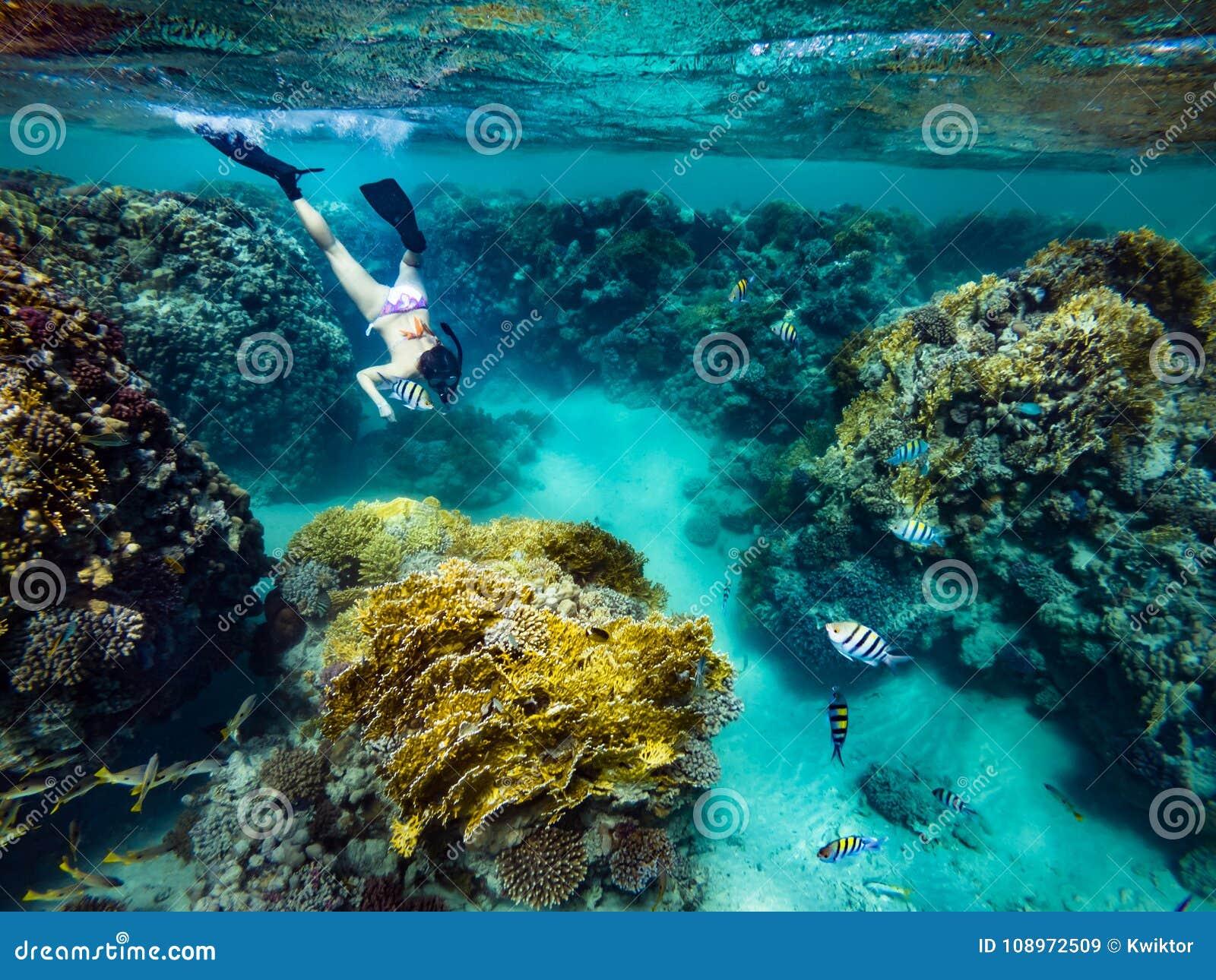 Turysty Snorkeling Turkusowy Czerwony morze Egipt