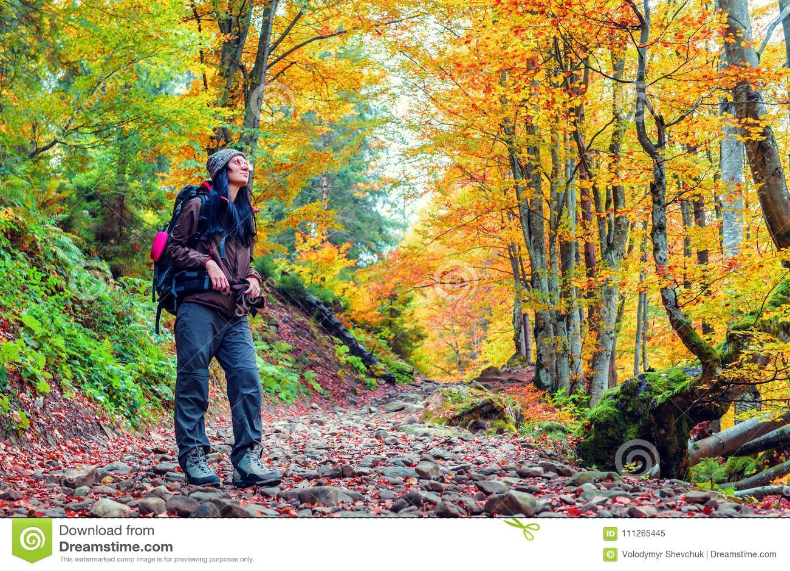 Turystyczna dziewczyna w żółtym jesień lesie