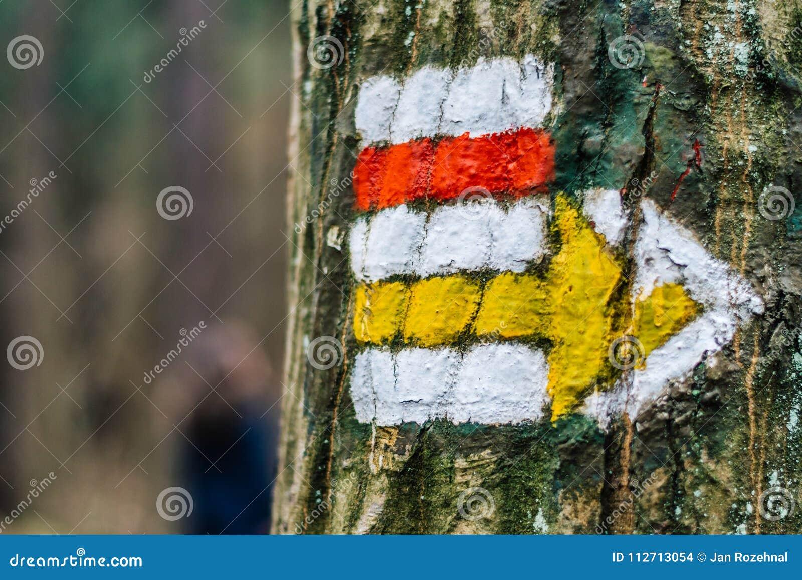 Turystyczny koloru znak na drzewie z strzała