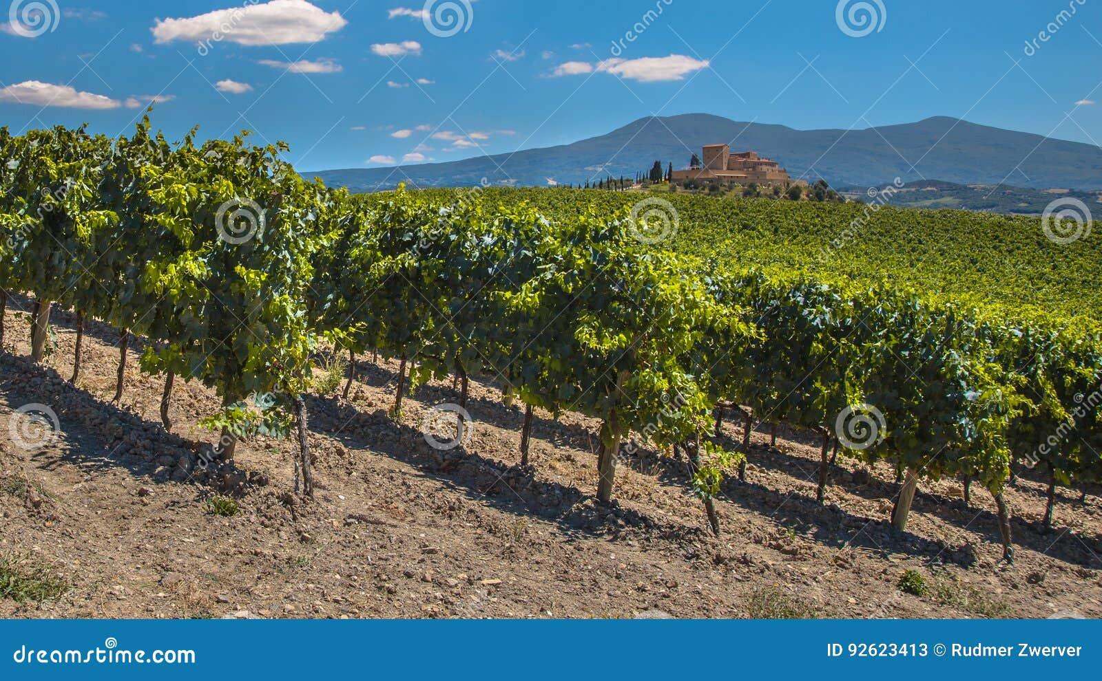 Tuscan Castle Overseeing Vineyards