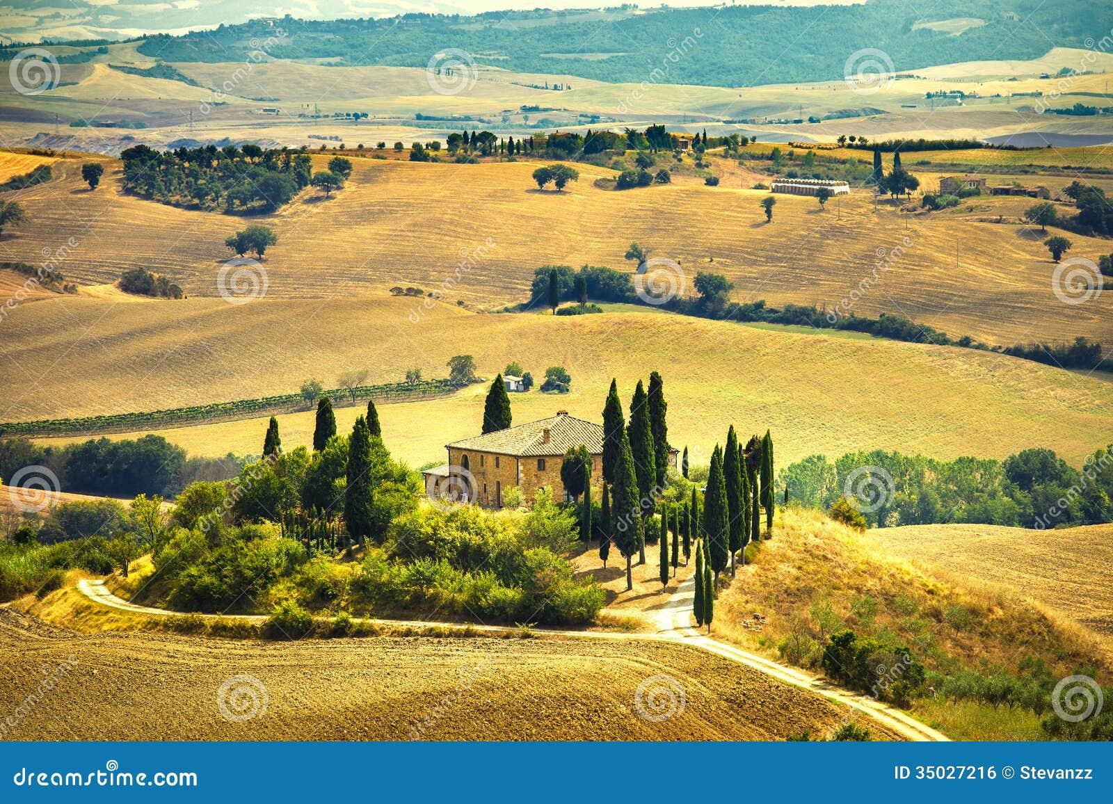 Tuscany farmland and cypress trees green fields san for Green italy