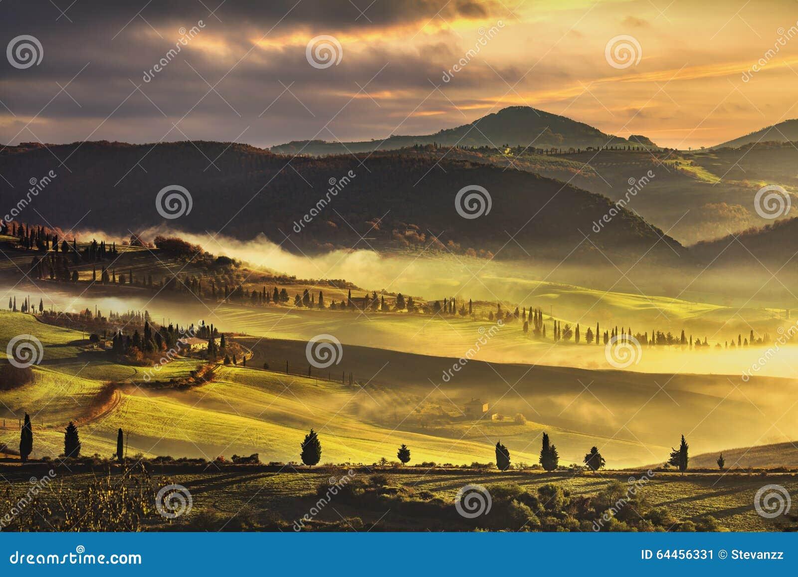 Tuscany mgłowy ranek, ziemia uprawna i cyprysowi drzewa, Włochy