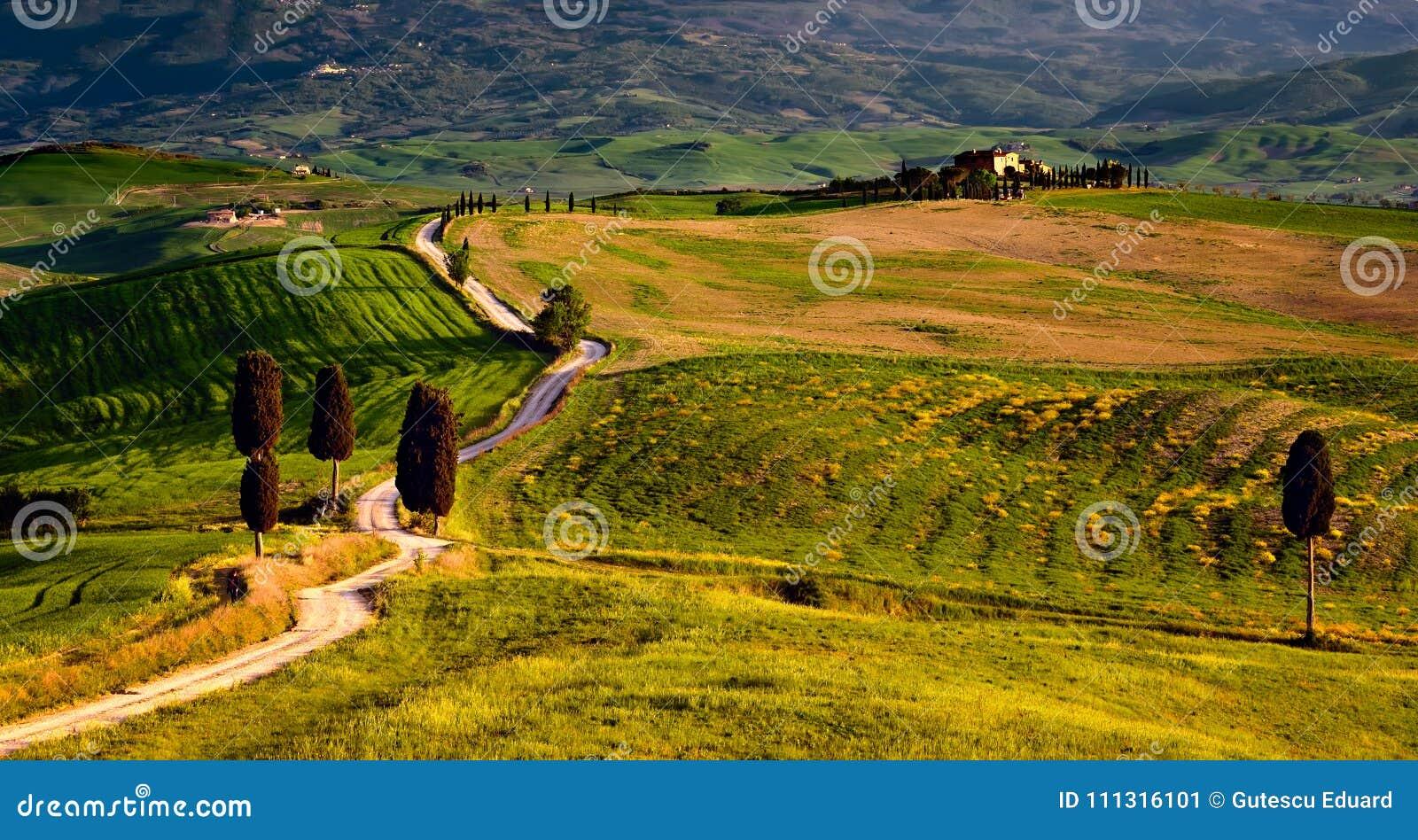 Tuscany scena od gladiatora filmu z drogą i domem wiejskim