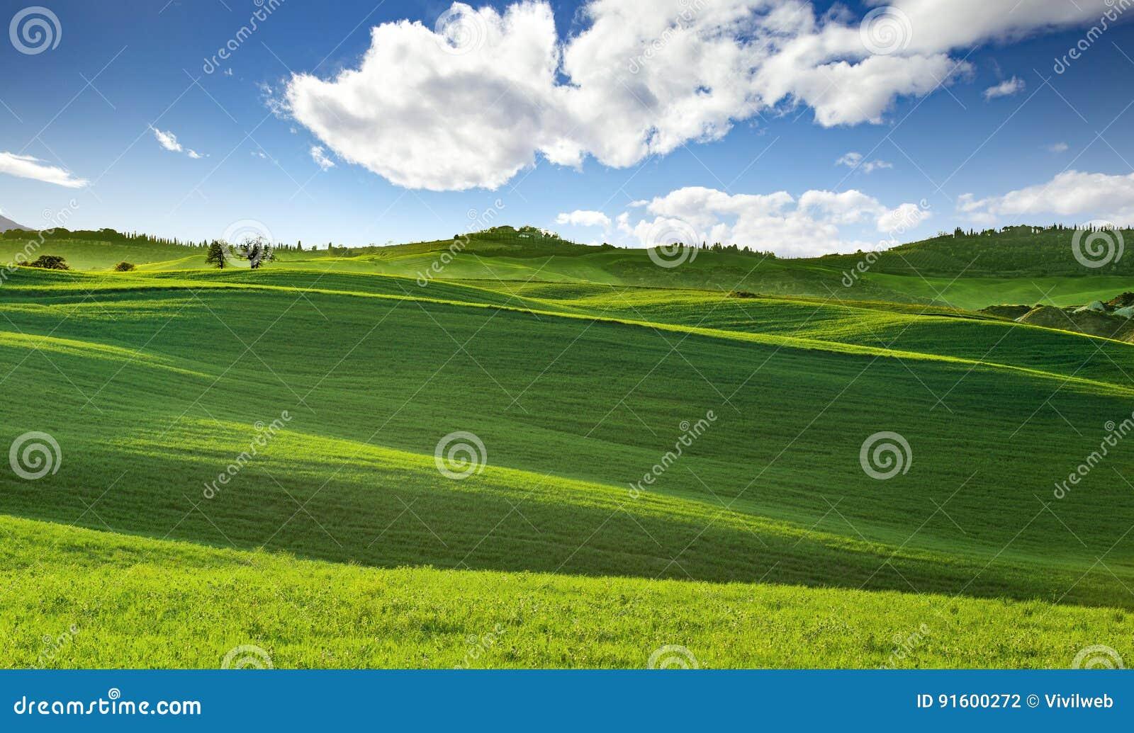 Tuscany toczni wzgórza w wiośnie