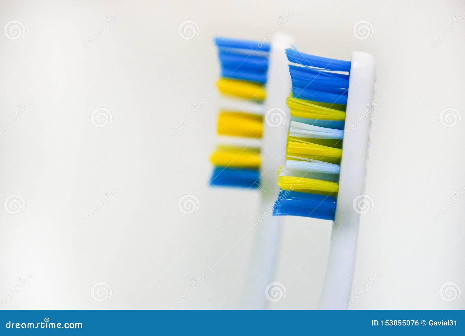 Två använde tandborstar på en vit bakgrund Begreppet av ändrande tandborstar, muntlig hygien, tandläkekonst, vänlig familj med