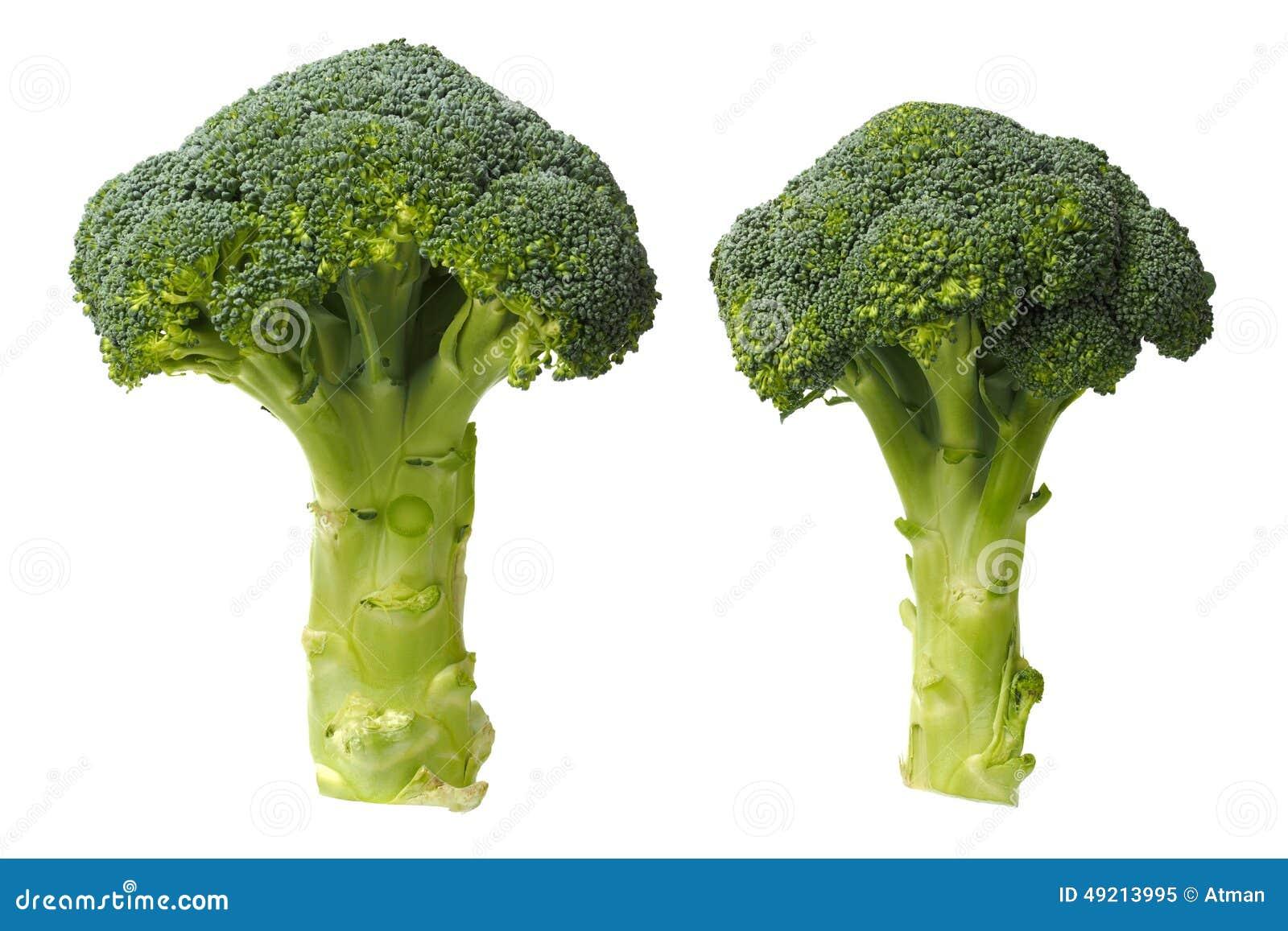 Två broccoli på vit