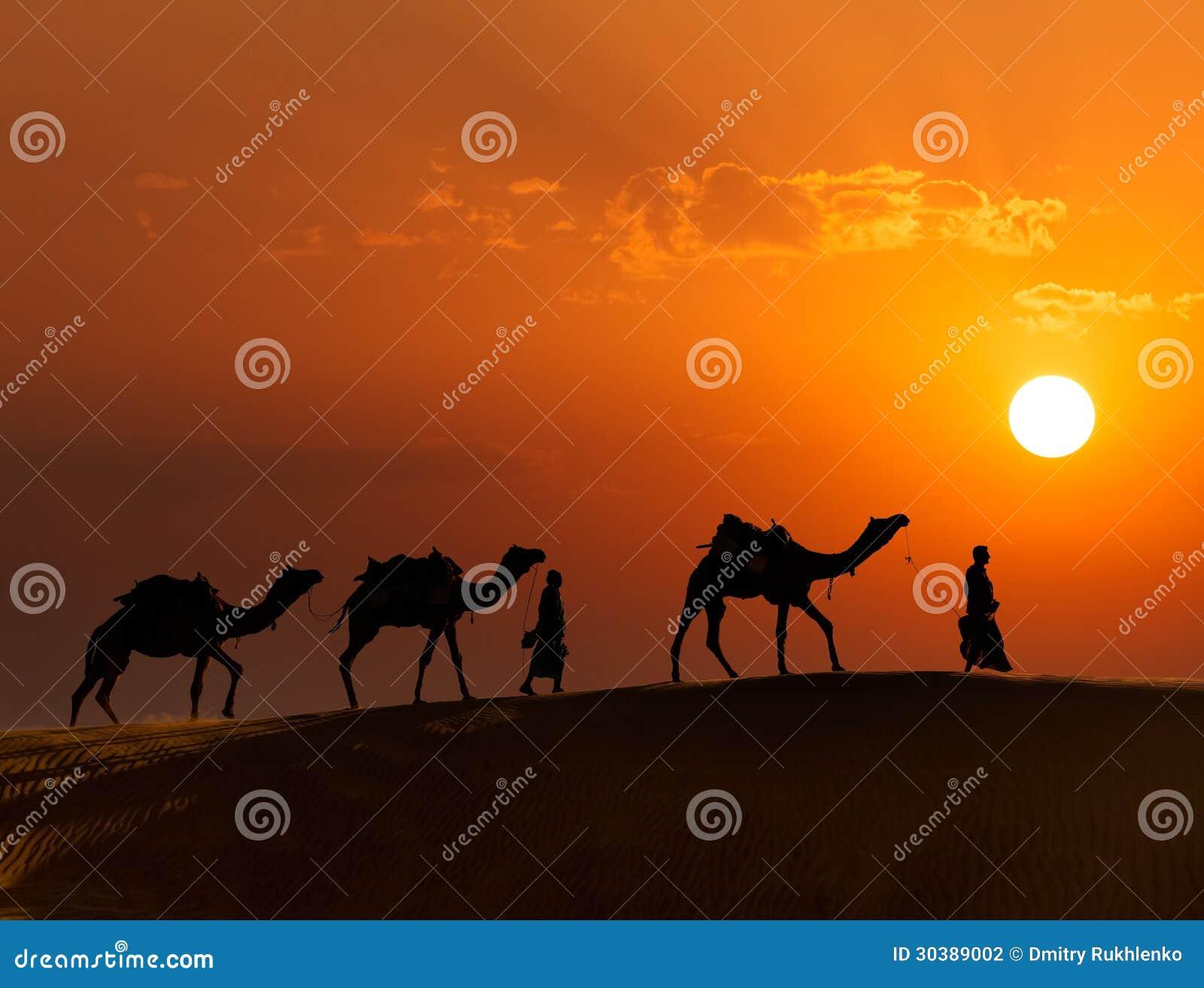 Två cameleers (kamelchaufförer) med kamel i dyn av Thar deser