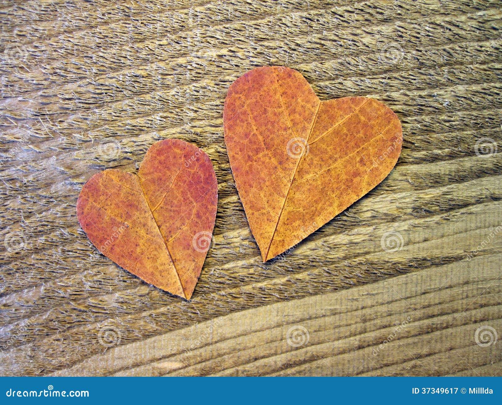 Två hjärtor som klipps från bladet