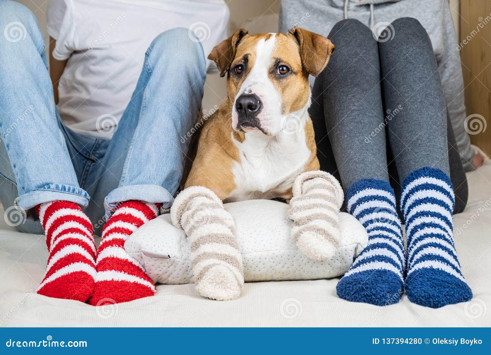 Två personer och deras hund i färgrika sockor som sitter på sängen i sovrummet