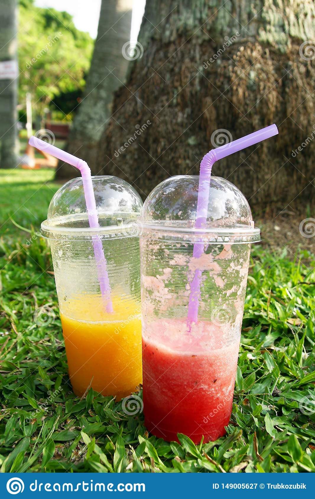 Två plast- exponeringsglas med mangofruktsaft och vattenmelonfruktsaft på ett gräs