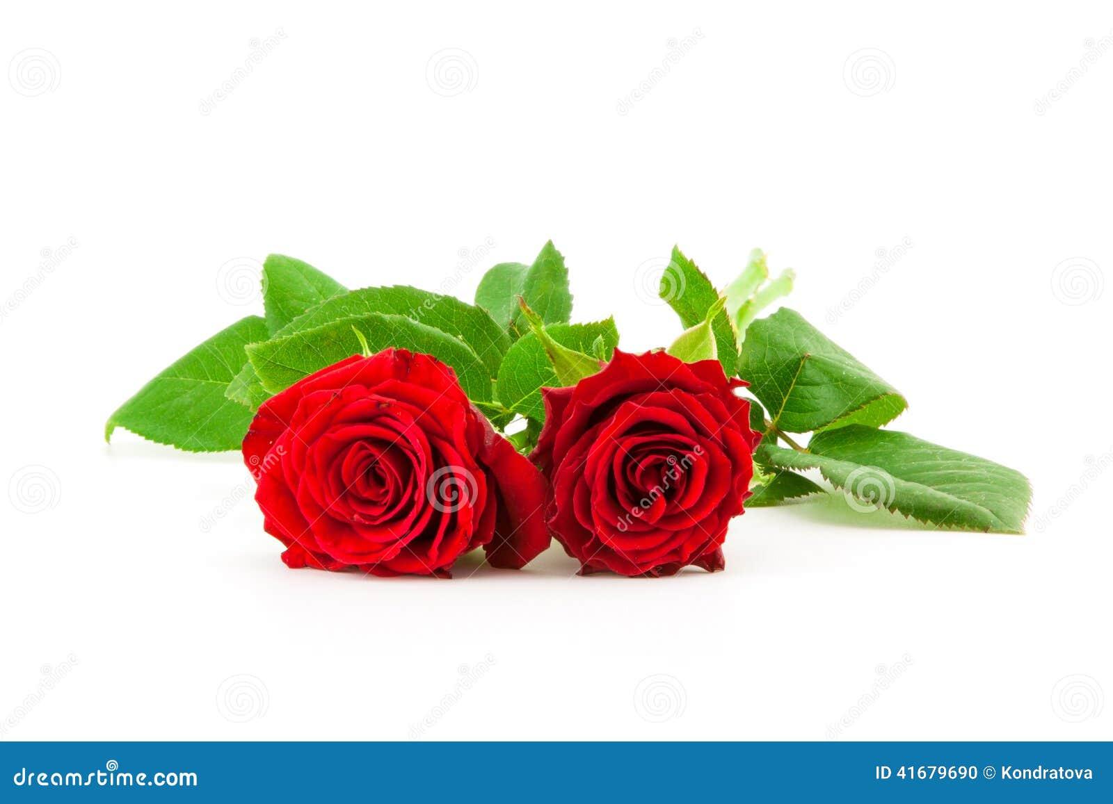 två rosor betyder