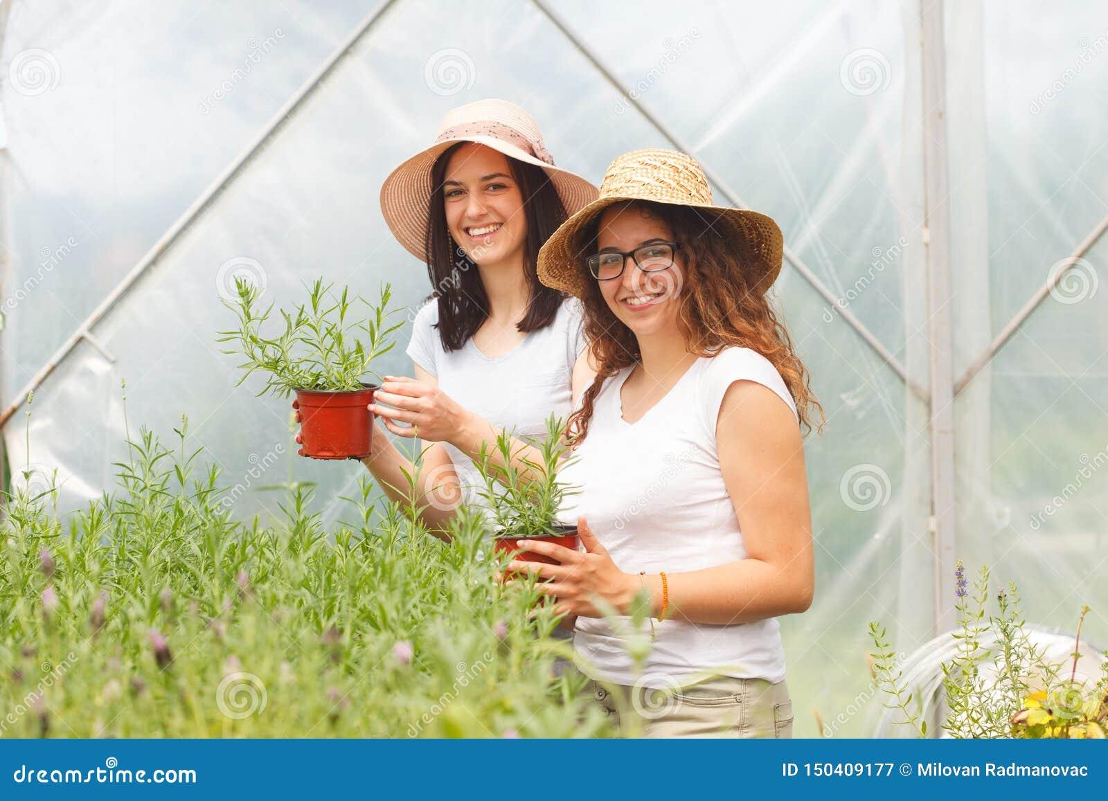 Två unga kvinnor som tillsammans arbetar i ett växthus