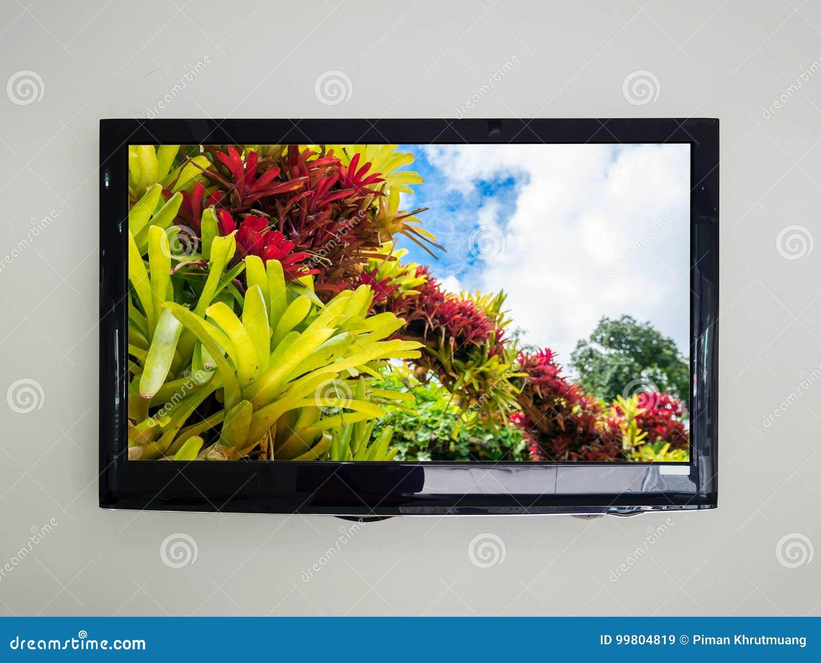 TV llevada en el fondo de la pared