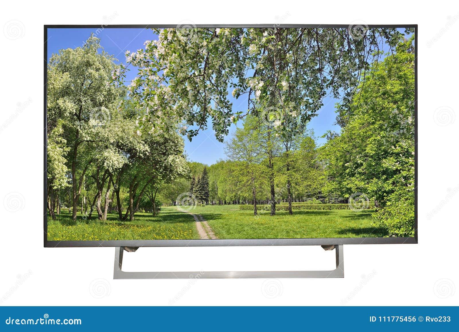 TV o monitor de alta definición moderna con paisaje de la primavera en el sc