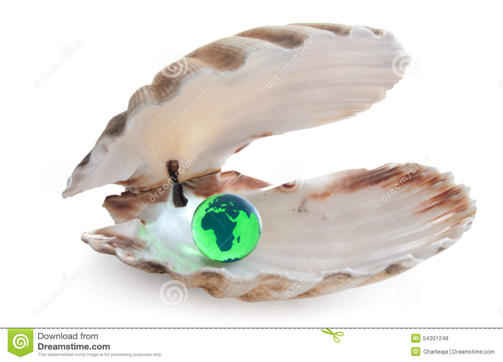 Twój ostrygowy świat