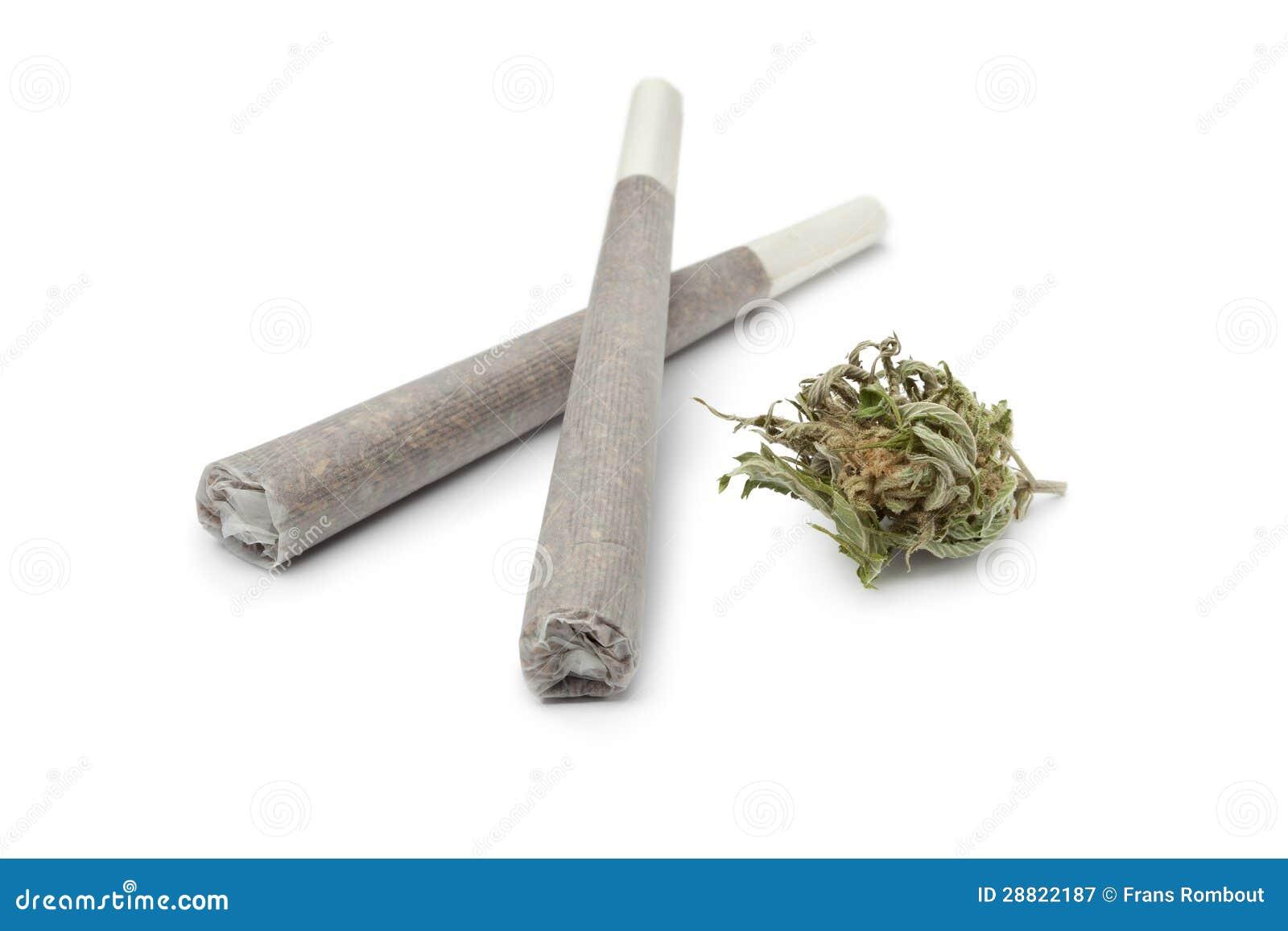 Twee adelborsten met een Marihuana ontluiken