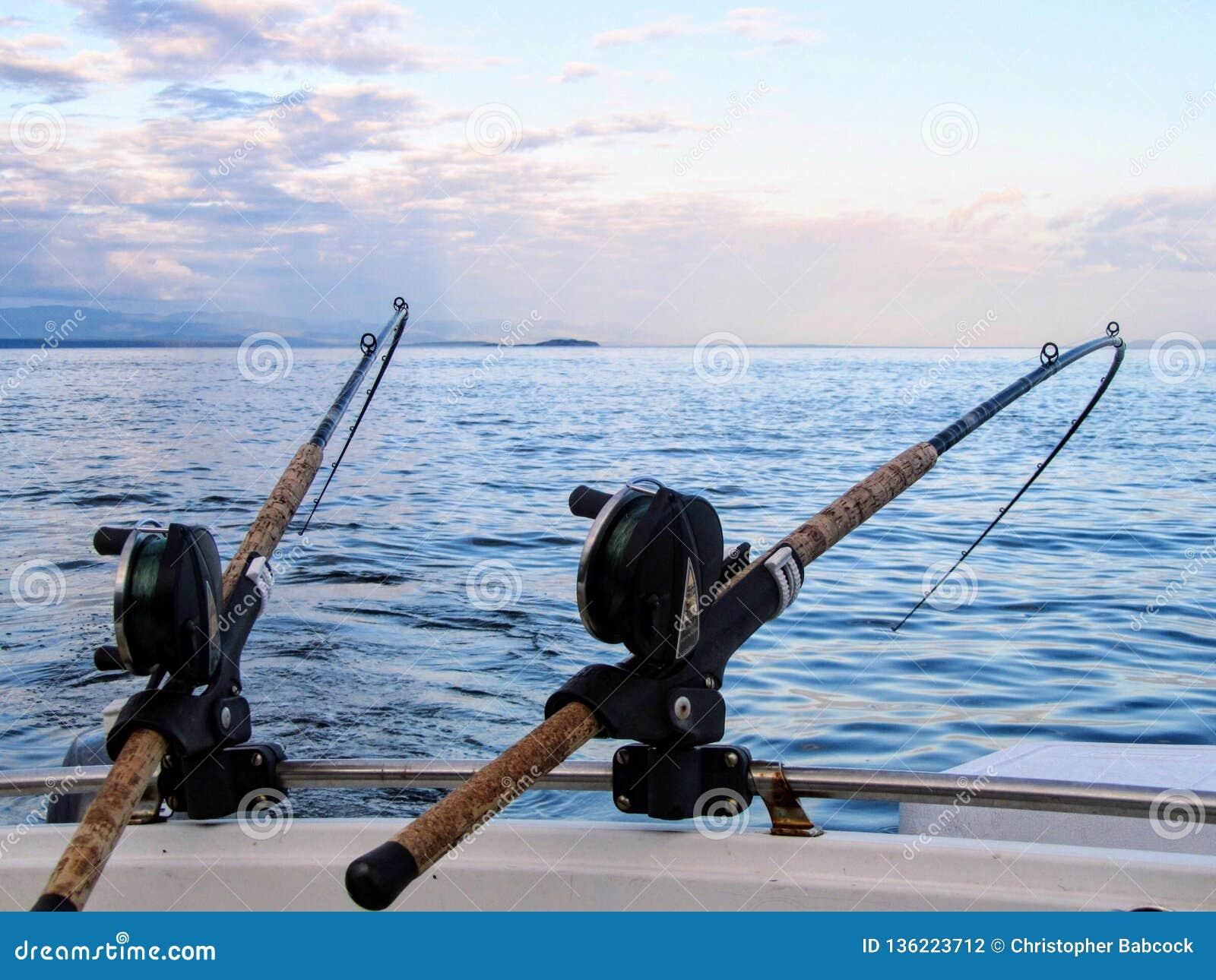 Twee die hengels in hengelhouders worden gehouden, aan een rug van een boot worden verbonden De staven worden gebogen van het gew