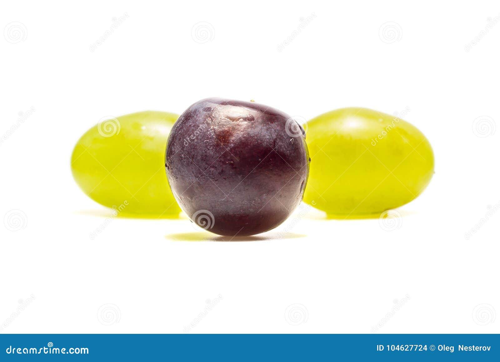 Download Twee Druivenverscheidenheden Op Een Witte Achtergrond Stock Foto - Afbeelding bestaande uit drie, verschillend: 104627724