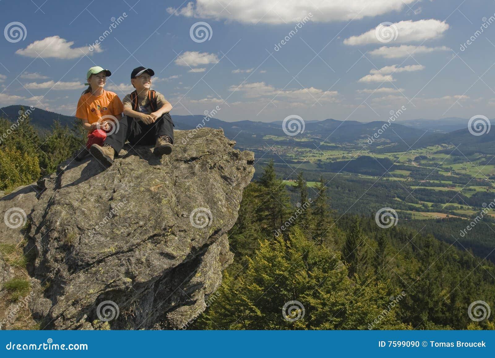 Twee jonge geitjes die op een rots in bergen zitten