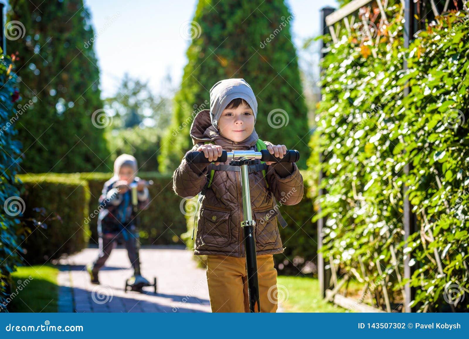 Twee kleine jonge geitjesjongens die op duwautopedden berijden Waarschuw de zomer of de lentedag De jongen die van het broersjong