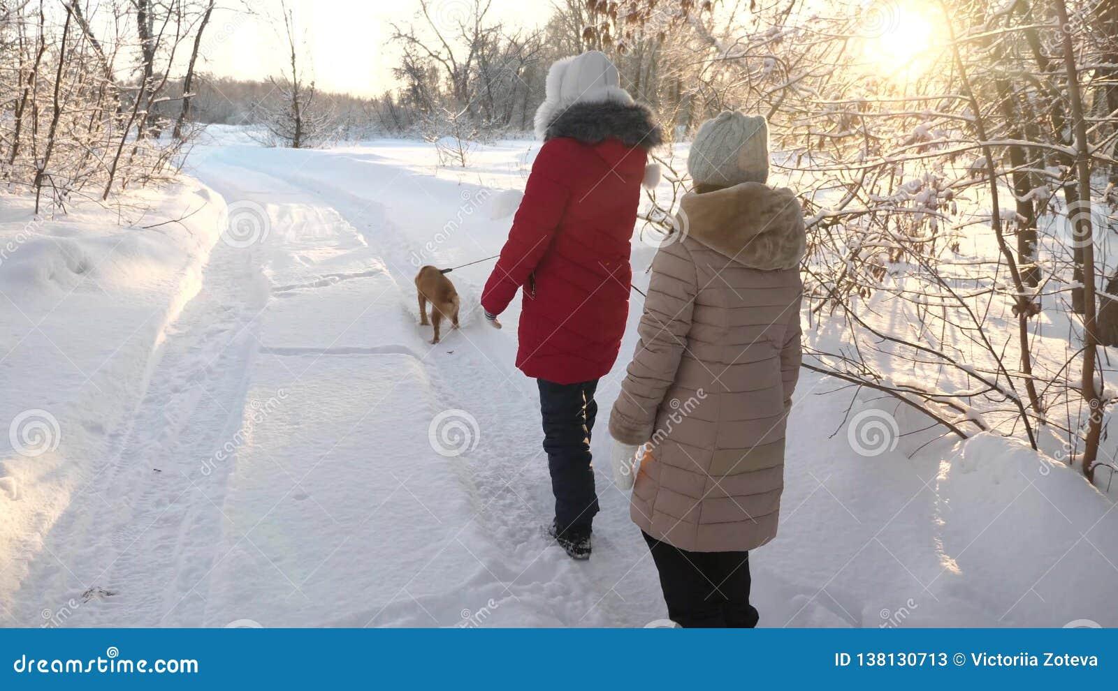 Twee meisjes en hond en hondgang langs weg in de winterpark De kinderen spelen met hond in sneeuw in de winter in het gelukkige b