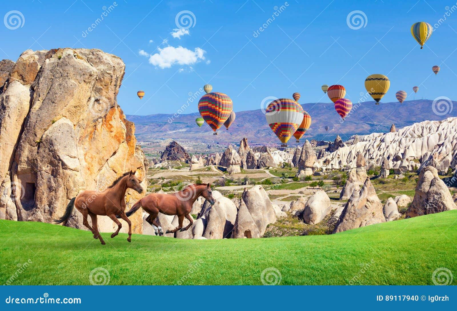 Twee paarden het lopen en hete luchtballons in Cappadocia, Turkije