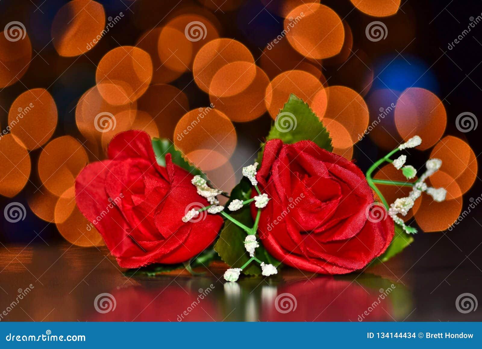 Twee rode rozen met bokehlichten