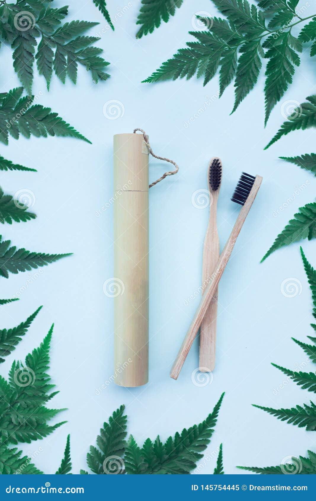 Twee tandenborstels van het ecobamboe
