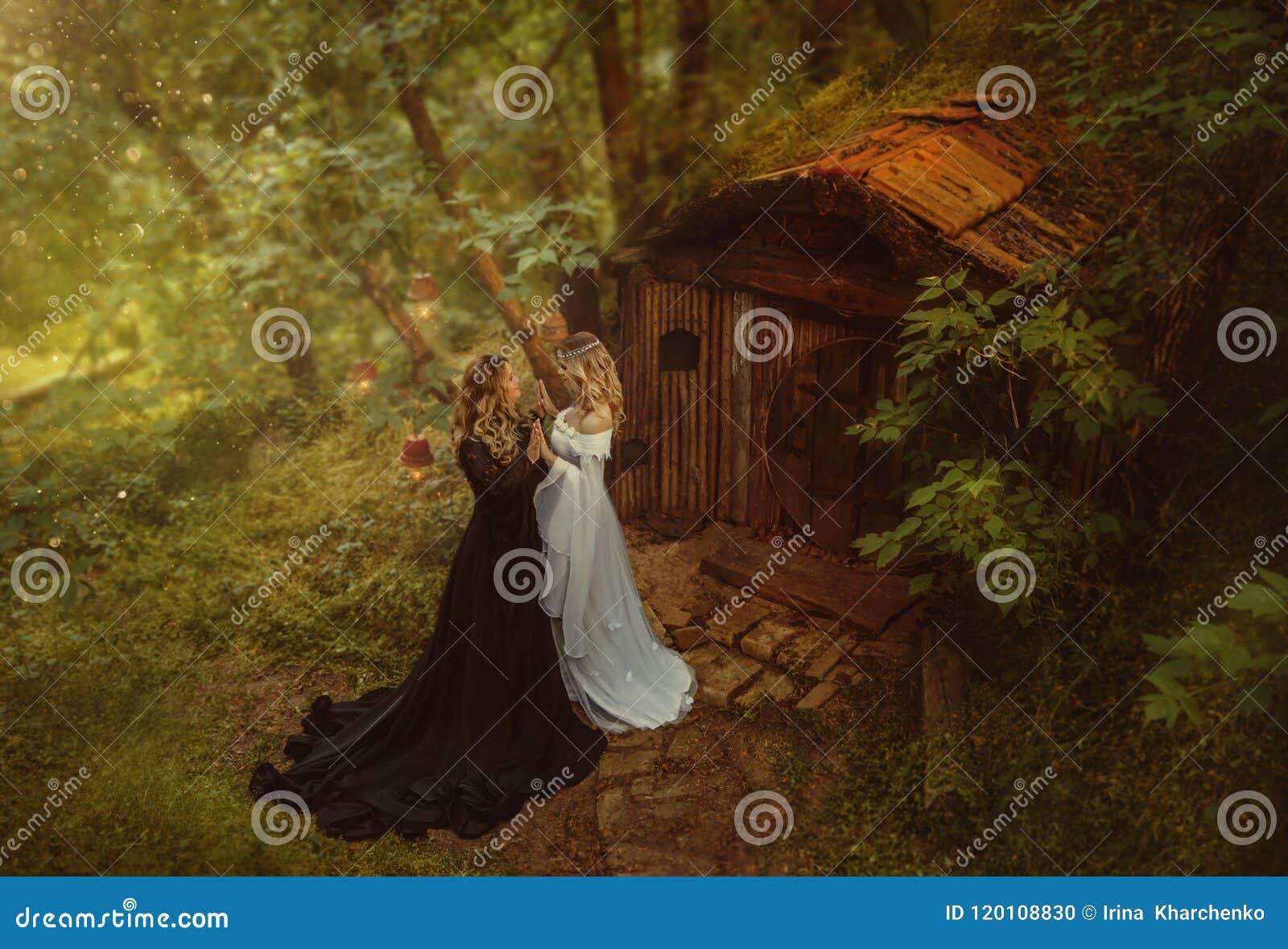Twee tovenaressen, donker en helder, ontmoetten bij de oude hut van gnomen in een aanraking van fee bos Twee meisjes elkaar, het
