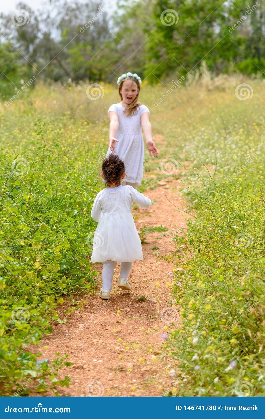 Twee zustermeisjes die het lopen op het groene park spelen openlucht
