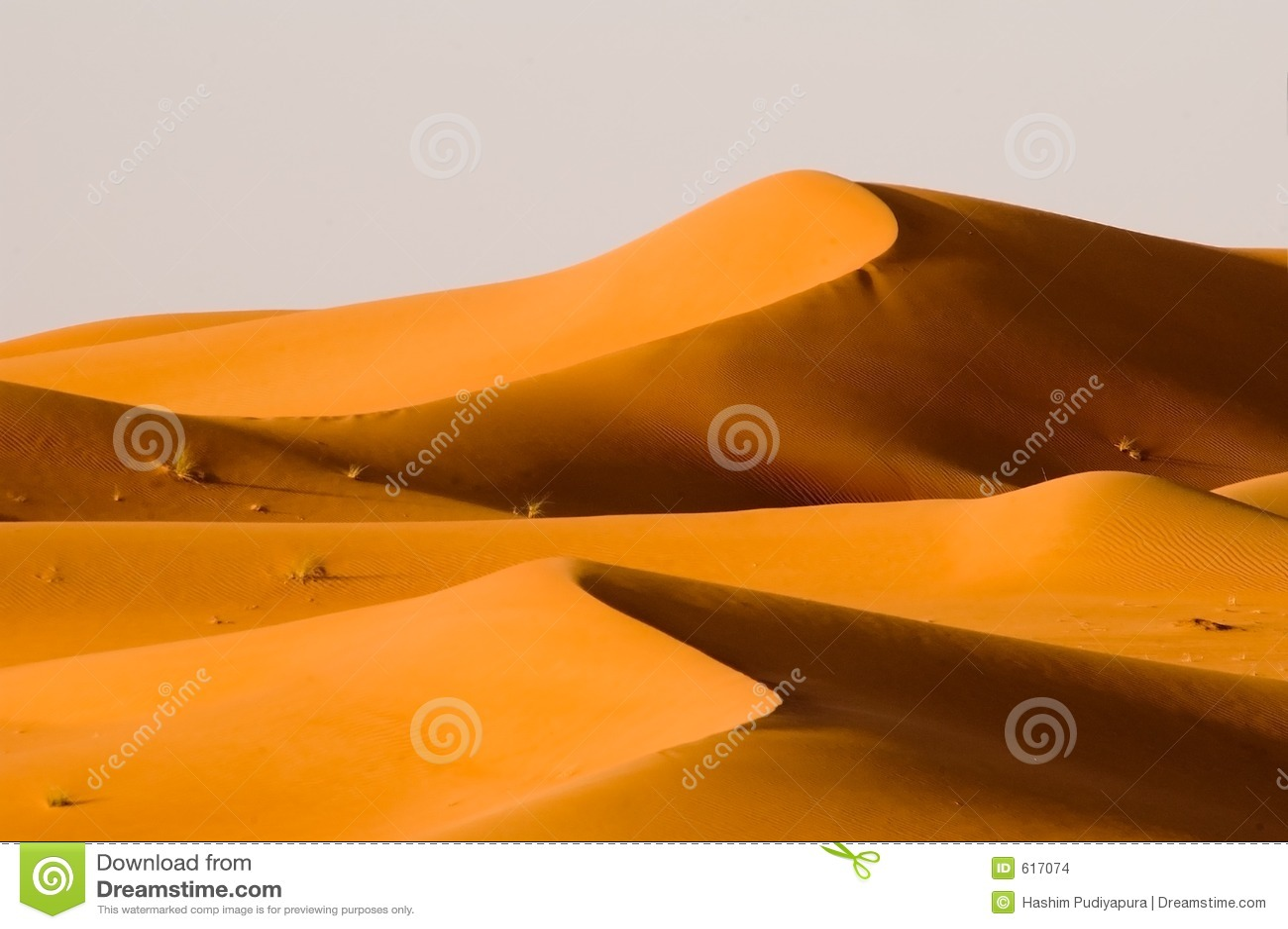 Tweeling duinen
